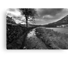 Wandering In The Lake District Metal Print