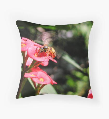 Euphorbia milii with Yellow Jack Throw Pillow