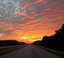 Morning Fire by Diana Hayward