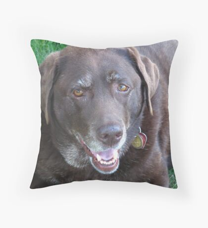 Sweet Pups Throw Pillow