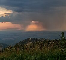 Approaching Storm by Mary Jo Taft