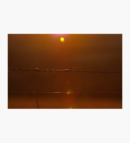 barb wire at sunset Photographic Print