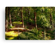 Sun Highlighted Woodlands Canvas Print