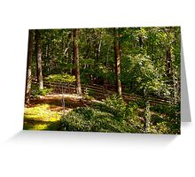 Sun Highlighted Woodlands Greeting Card