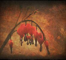Bleeding Love by Denise Abé