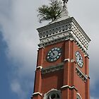 a tree grows from it ~ Decatur Courthouse tower, Greensburg, IN by Hope A. Burger