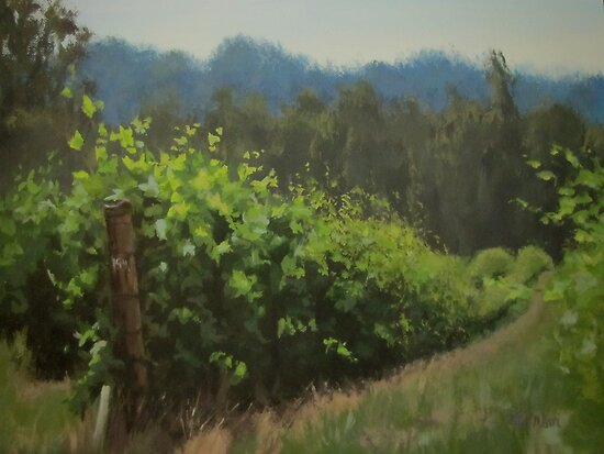 Walk in the Vineyard by Karen Ilari