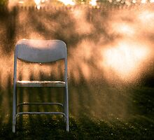 Sitting in Gold by Abby Thompson