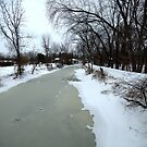 Frozen perspective, Ohio and Erie Canal. by Billlee
