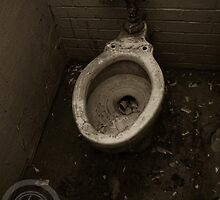 The Toilet by Brad Walsh