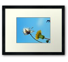 ©NS Morning Yellow And Clear Sky IA. Framed Print