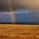 Gold...at the end of the Rainbow by JamesA1
