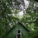 Abandoned Rental Property, Saint Paul, MN 2011 by Timothy Wilkendorf