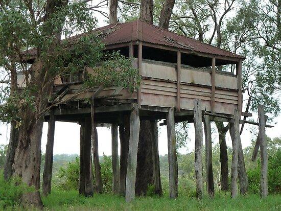 Mega Tree House By Dashtravels Redbubble