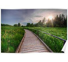 Boardwalk Through Wetlands Poster
