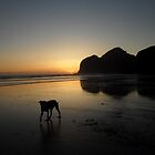 Bethells Beach Sunset by chrissy mitchell