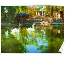 Swans in the Lake. Modern Painting. Poster
