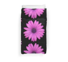 Pink African Daisy Isolated on A Black Background Duvet Cover