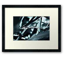 drops III Framed Print