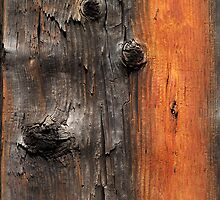 Wood 3 by Yampimon