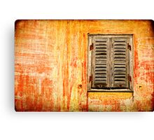Window and amazing wall Canvas Print