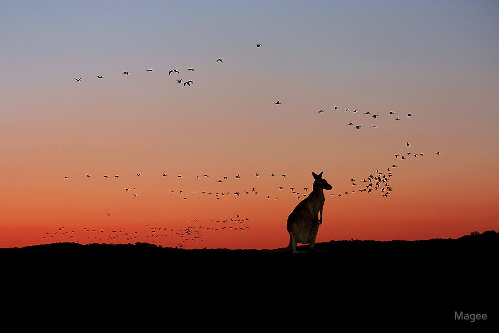 Sunset in Oz by Magee