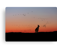 Sunset in Oz Canvas Print