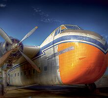 Bristol Freighter A81-1 by Robert  Welsh