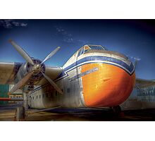 Bristol Freighter A81-1 Photographic Print
