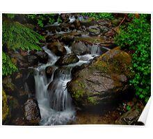 Just Drop In ~ Oregon Cascades ~ Poster