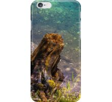 Hallstatt in Austria-006 iPhone Case/Skin