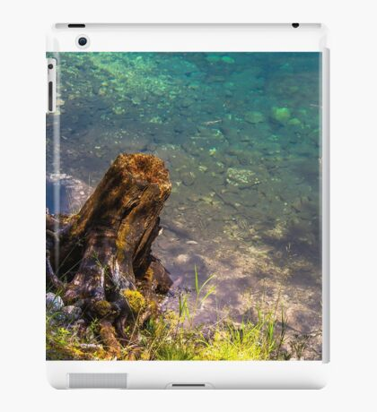 Hallstatt in Austria-006 iPad Case/Skin