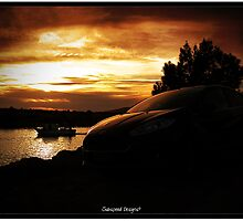 Ford fiesta at sunset by Subspeed