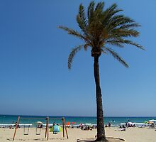 Alicante Beach by Coexistism