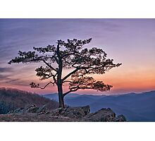 Twilight at Ravens Roost Photographic Print
