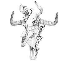 Taurus Photographic Print