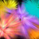 Fireworks by MarianaEwa