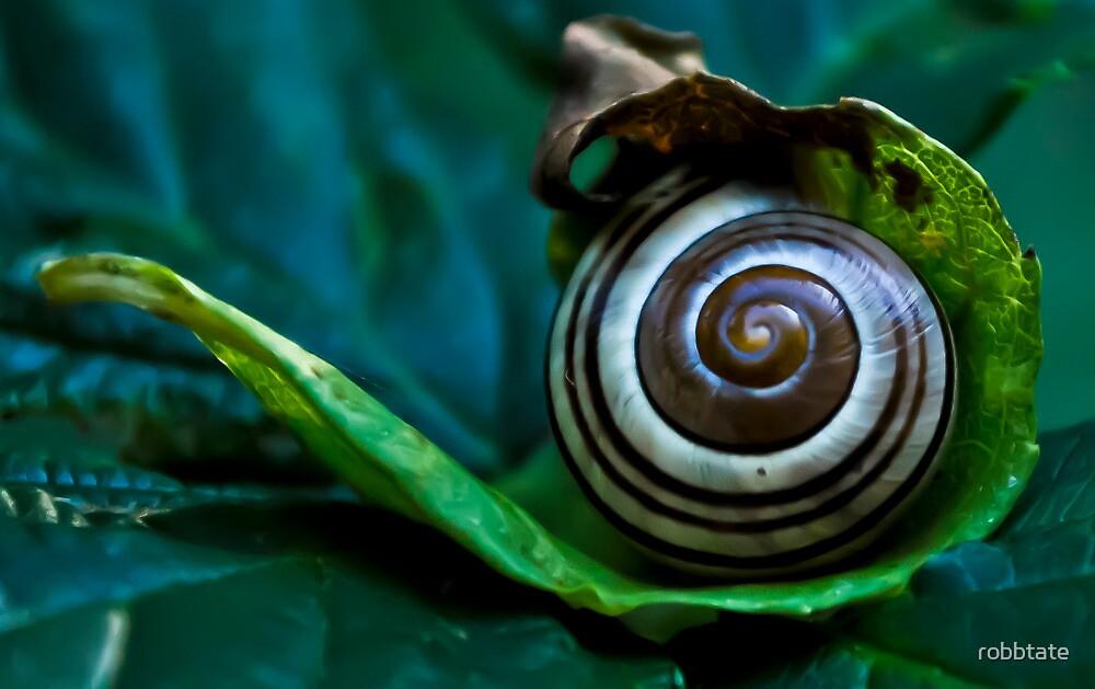 Whirls by robbtate
