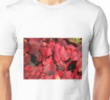 Red, The Colour of Autumn. Unisex T-Shirt