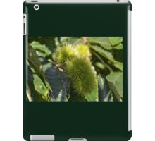 Chestnuts roasting on an open fire ........... iPad Case/Skin