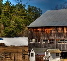The Barn and Chicken Coop by Monica M. Scanlan
