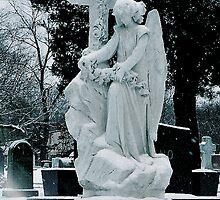 un ange du hiver by d w Stojek