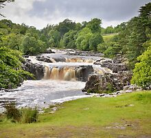 Low Force by Mat Robinson
