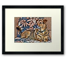 Gerry and the Lounge Chair Framed Print