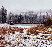 Snow At Lost Lake by Charles & Patricia   Harkins ~ Picture Oregon