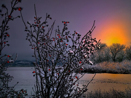Just A Touch Of Snow by Charles & Patricia   Harkins ~ Picture Oregon