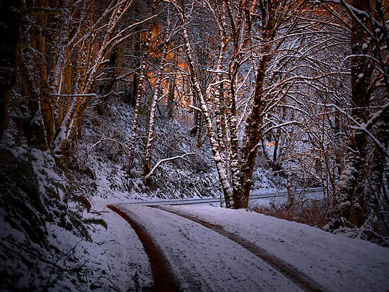 Follow The Light by Charles & Patricia   Harkins ~ Picture Oregon