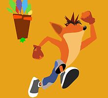 Crash Bandicoot by Dimeji