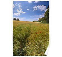 Field View, Avington near Winchester Poster