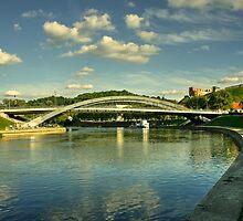 Vilnius Castle Bridge  by Rob Hawkins